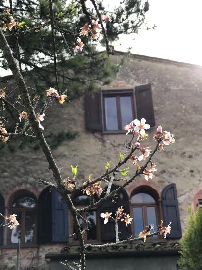 Fienile San Casciano in Val di Pesa €290.000,00